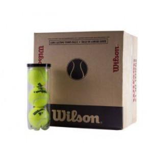 Wilson Pelotas de Tenis / Padel  TP PLUS  1x3